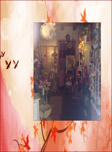 Boutique de l'artiste